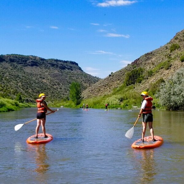 SUP Stand Up Paddle Boarding on the Rio Grande with New Mexico River Adventures!